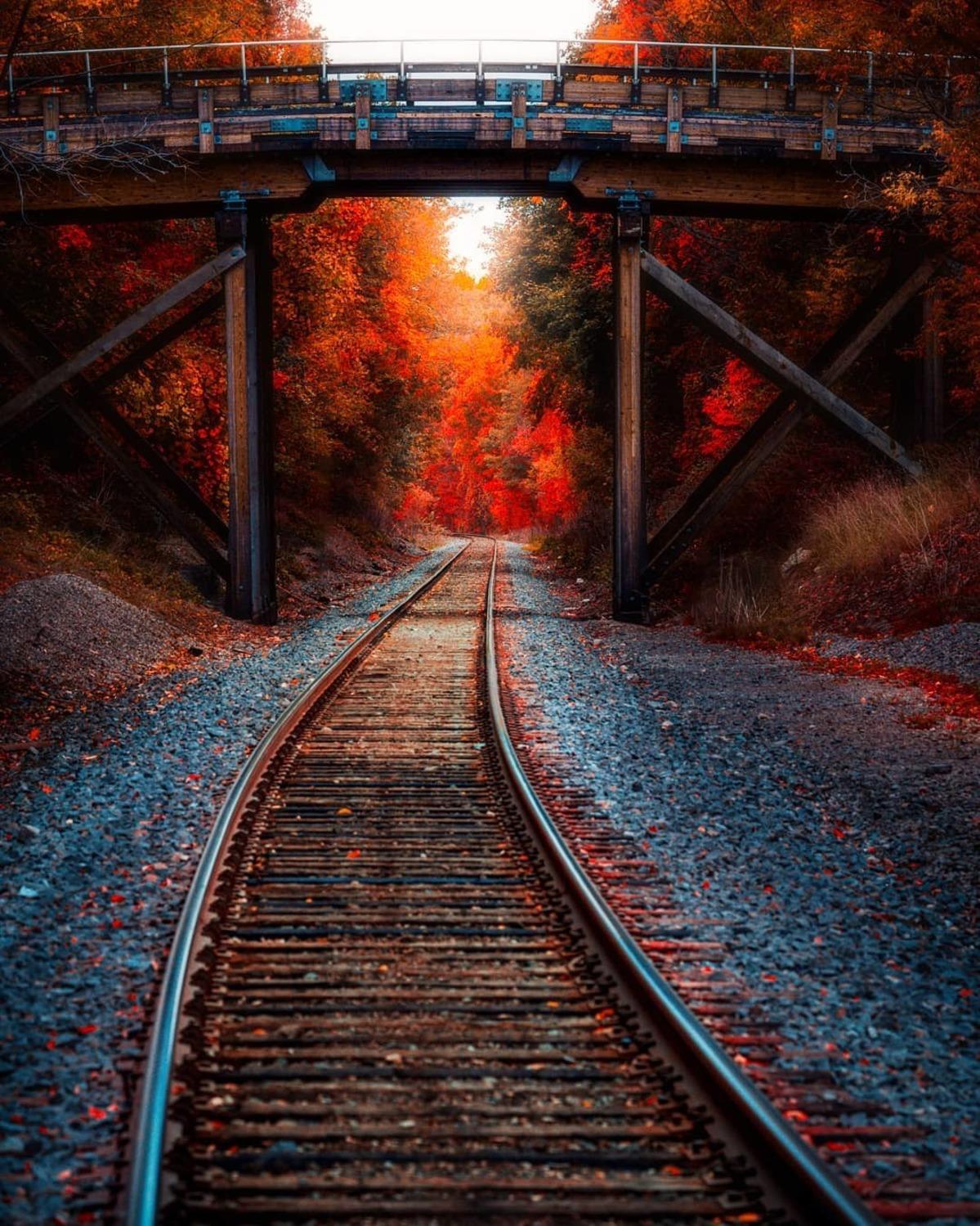 Instagram Follow Friday – Beauteous Bridges