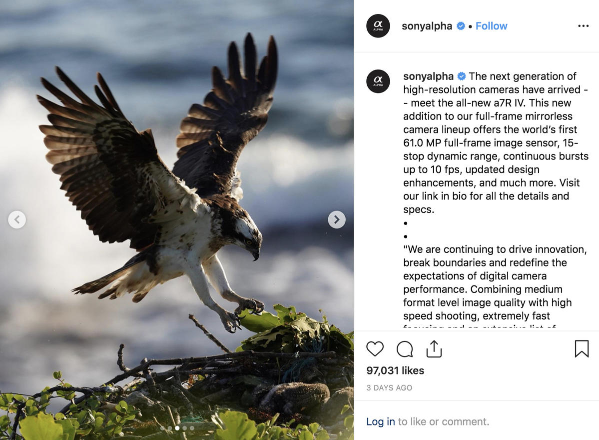 Instagram Follow Friday: Sony α7R IV Edition