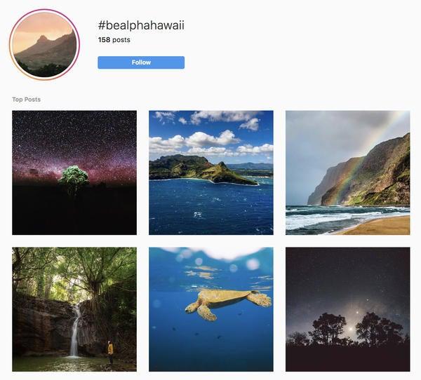 Alpha-Universe-Instagram-Follow-Friday-Feb8.jpg