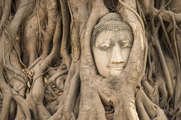 Alpha-Universe-Ira-Block-Thailand-Ayutthaya_140207_TRA_029.jpeg