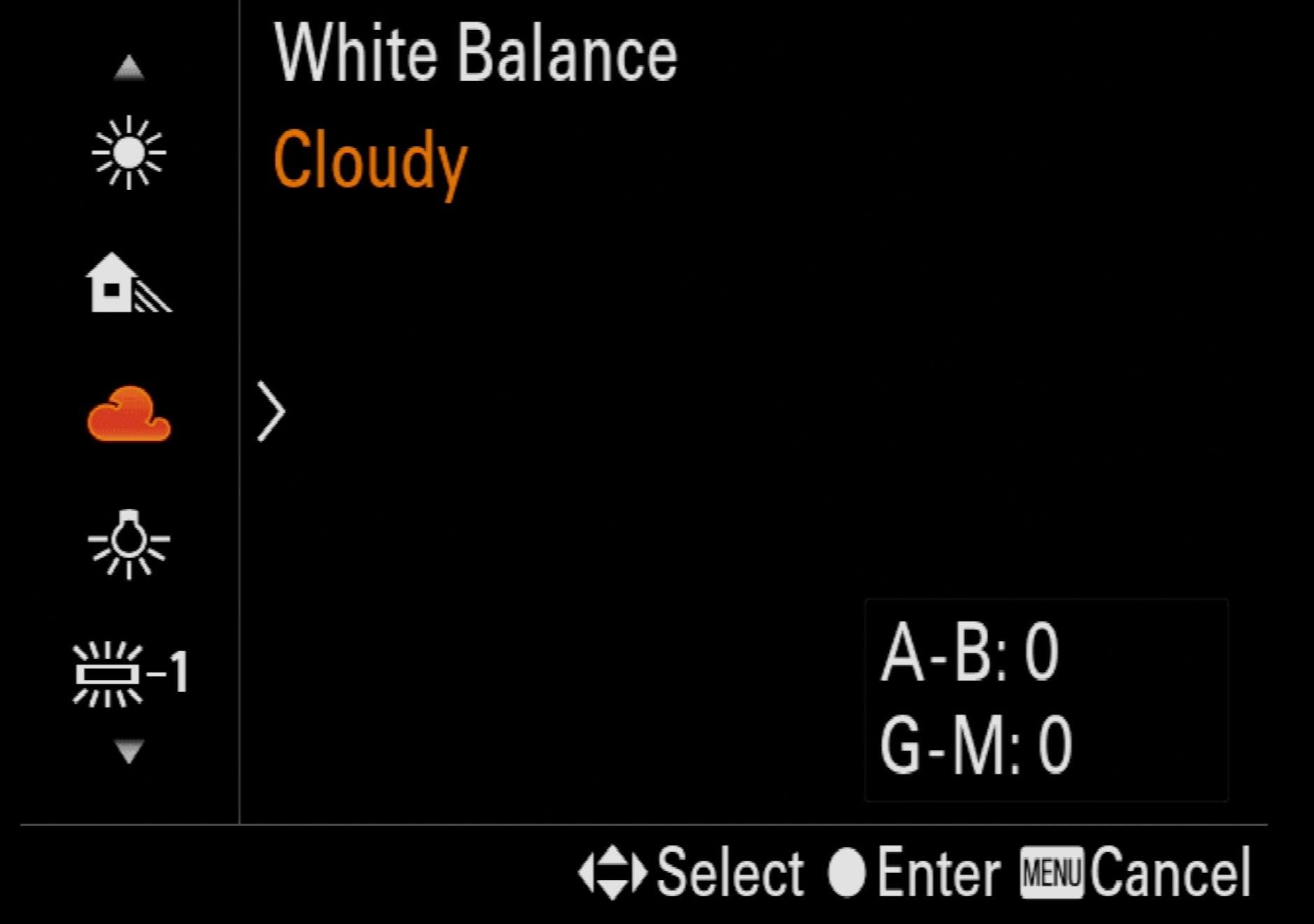 Alpha-Universe-Macro-Camera-Setup-White-Balance-Cloudy.jpeg
