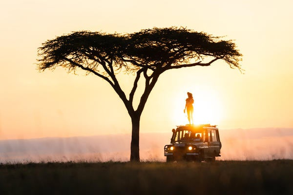 Alpha-Universe-Matthew-Hahnel---Kenya-Acacia-Tree.jpg