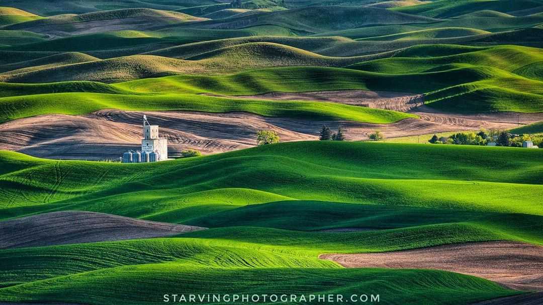 Alpha-Universe-Photo-by-Mahesh-Thapa-starvingphotographer-The-Palouse.jpg