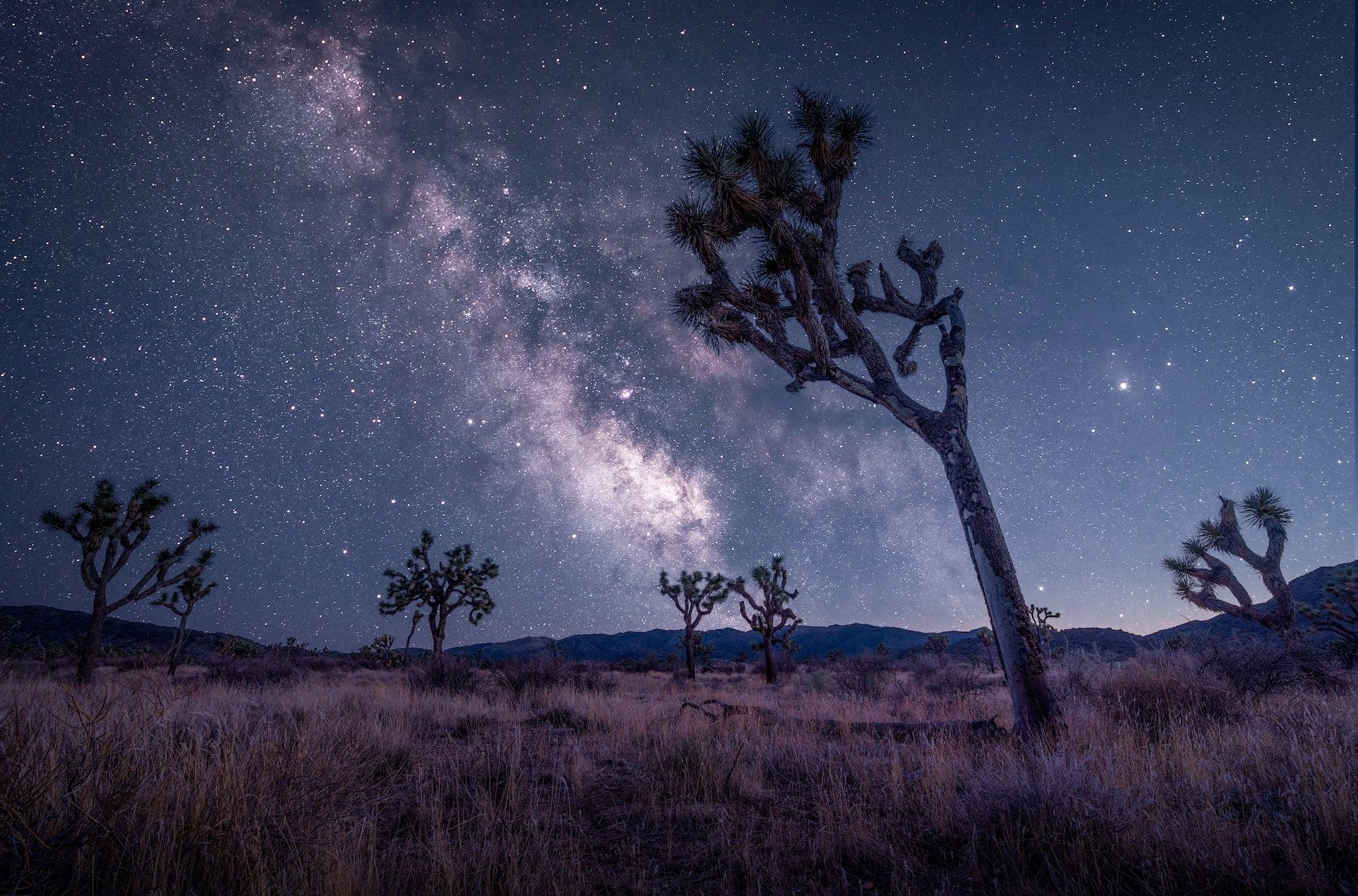 Photo by Michael Castaneda. Sony α7R III. Sony 16-35mm f/2.8 G Master. Foreground: 1/8-sec., f/10, ISO 100. Sky: 305-secs., f/2.8, ISO 320