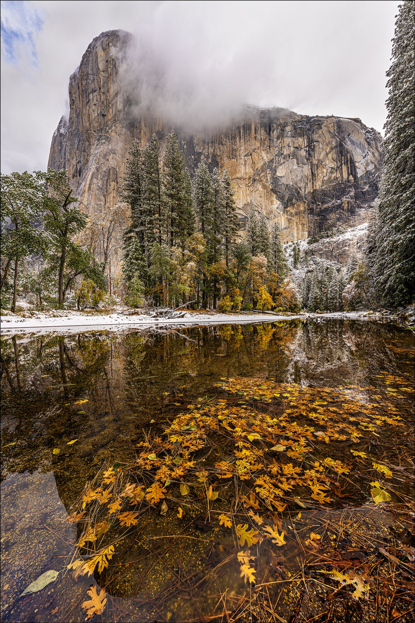El Cap - Photo by Gary Hart Snowfall in Yosemite with Sony 12-24mm f2.8 G Master Lens and A7R IV - Alpha Universe