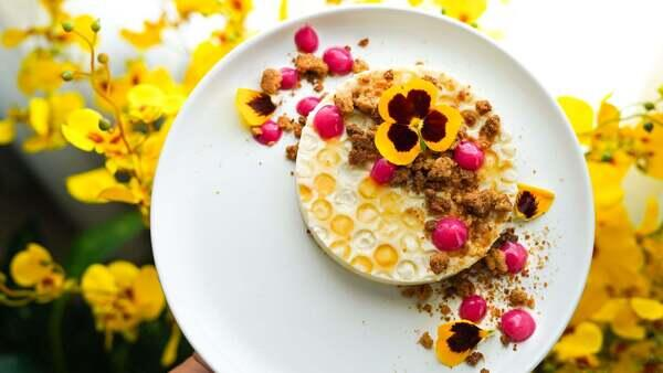 Photo by Alpha Female+ Winner Kristin Atwood from Flight of the Bumblebees Episode 3: Honey Panna Cotta