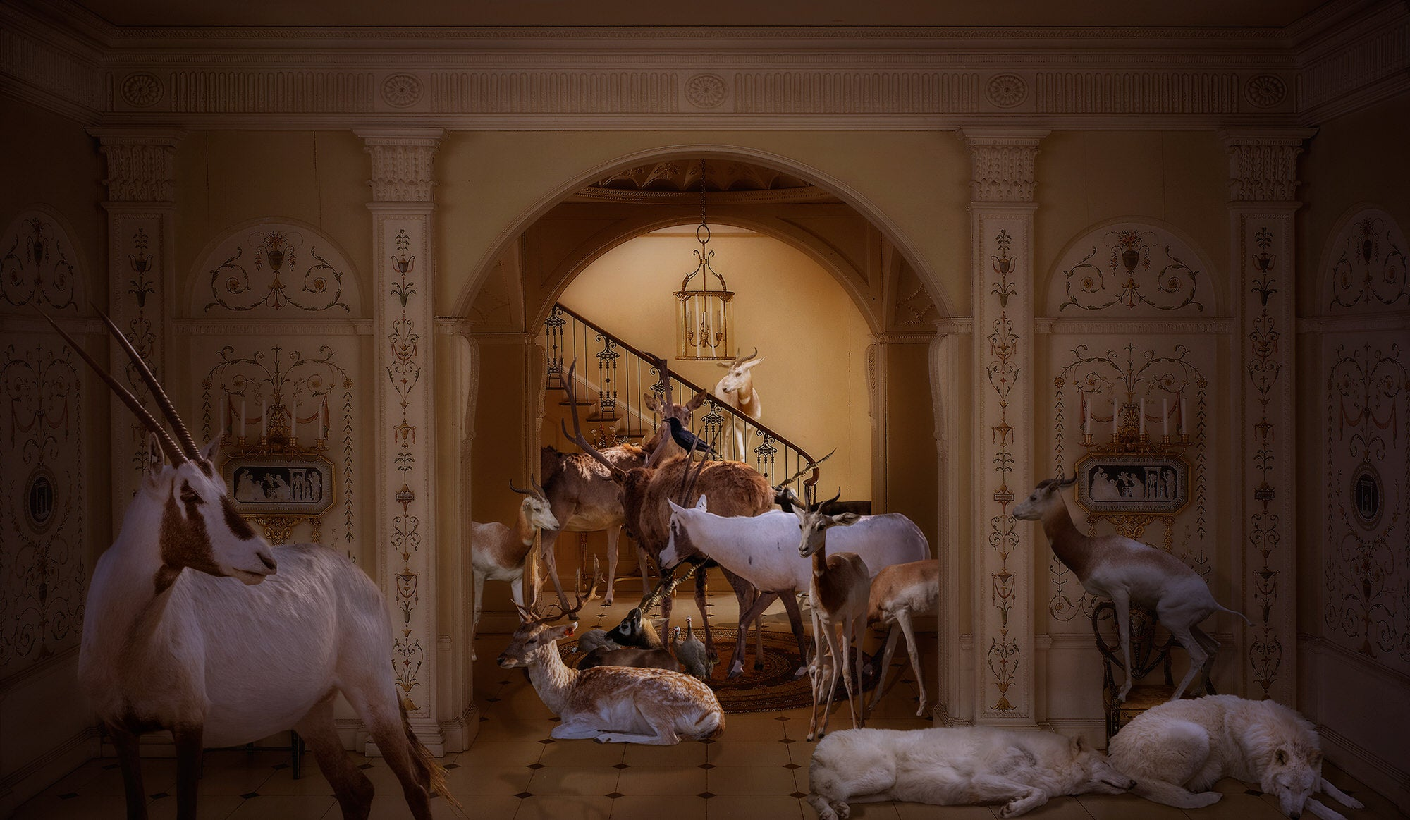 Alpha-Universe-photo-by-Lisa-Frank--Hooved-Animals_-English-Entrance-Hall-of-the-Georgian-Period.BJ9O7p1hv.jpg