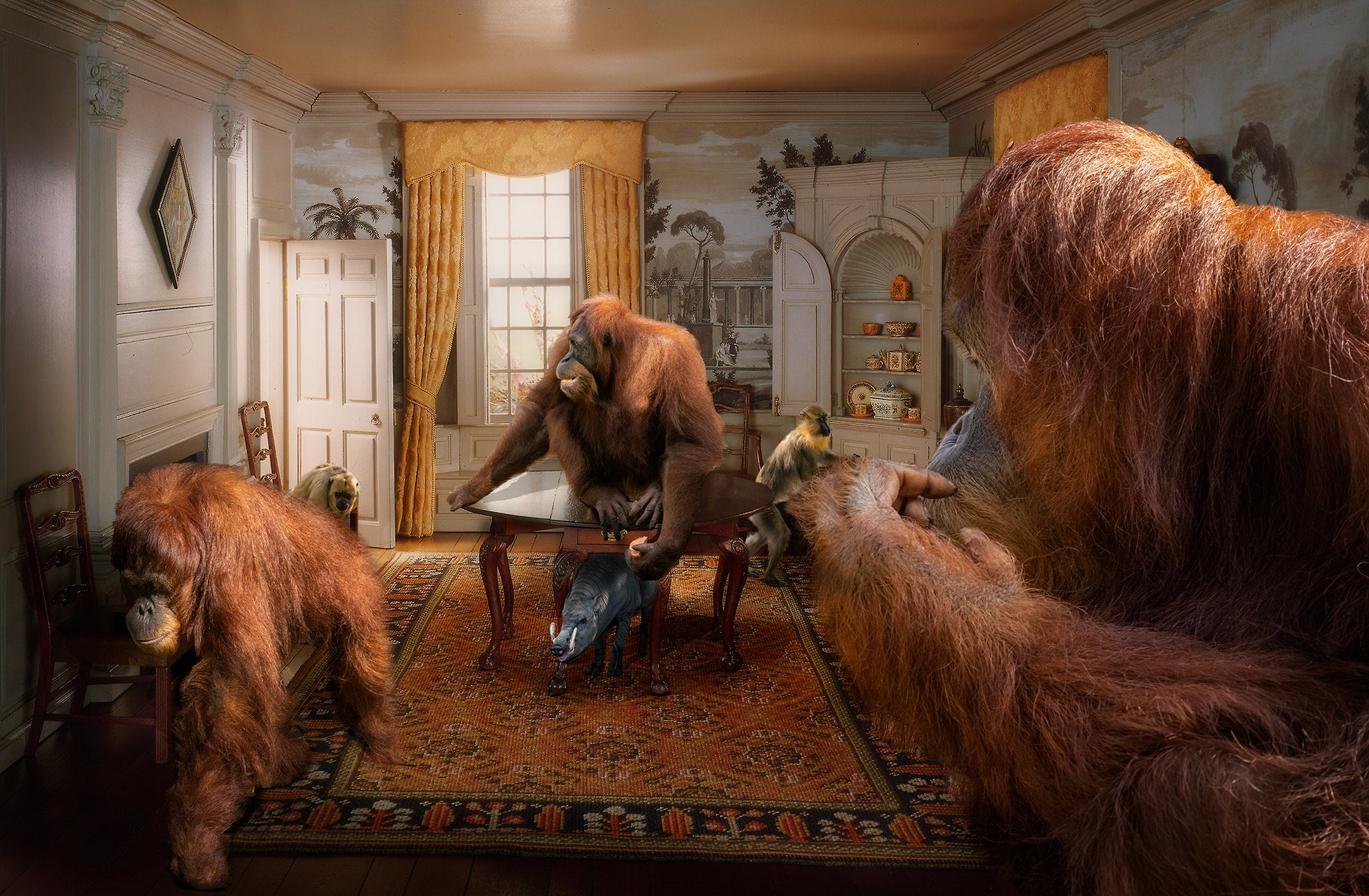 Alpha-Universe-photo-by-Lisa-Frank--Orangutan_-New-Hampshire-Dining-Room-1760.SkebFmTJhw.jpg