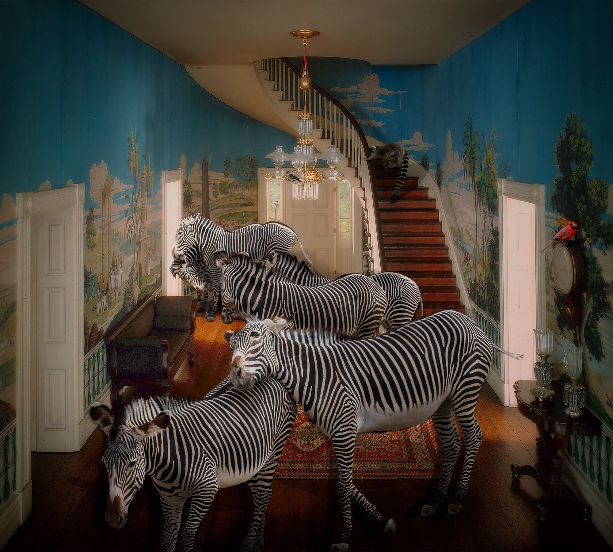 Alpha-Universe-photo-by-Lisa-Frank--Zebras_Tennessee-Entrance-Hall-1835.ByfwYQpyhw.jpg