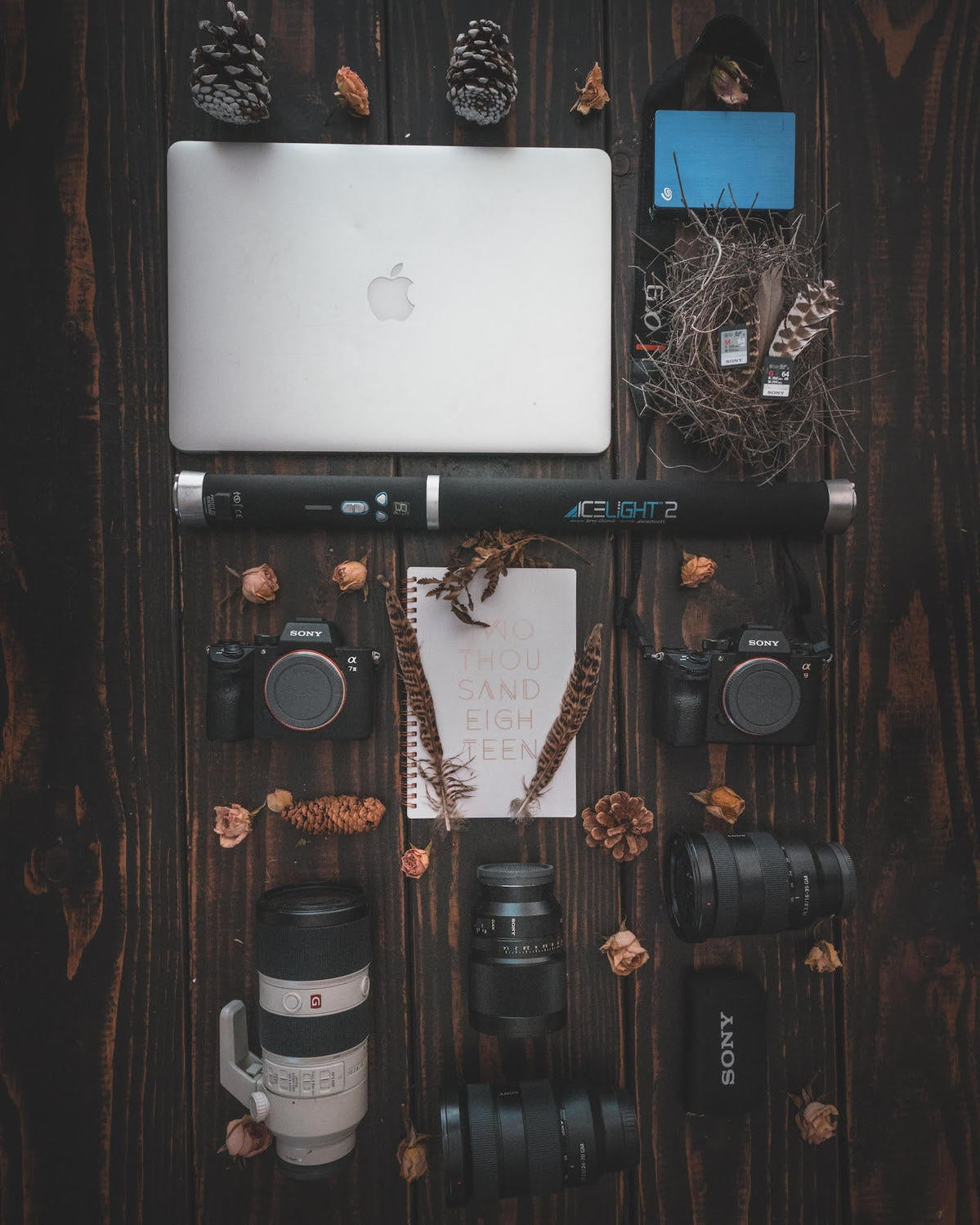 What's In My Bag: How A Portrait Photographer Creates Her Signature Moody Style